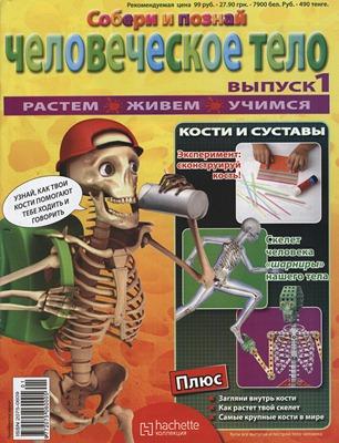 Обложка журнала Человеческое Тело, выпуск №1