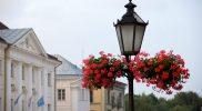 Вертикальное озеленение на фонарях Тарту