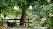 В Ботаническом саду Тарту