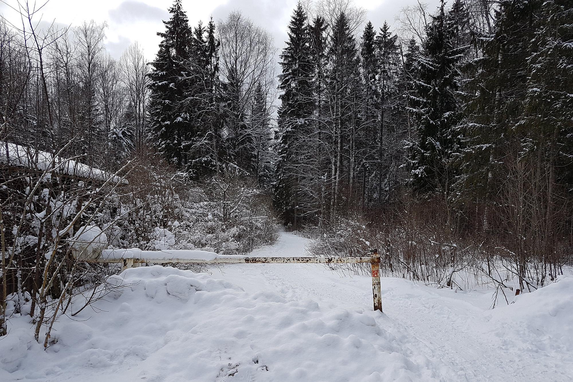 Гейзеры ещё одна парковка. В лес проезда нет. И хорошо