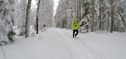 Трейловый бег по лесу