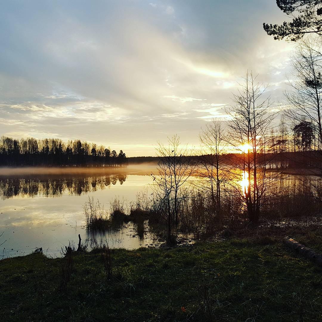 Озеро щучье комарово рыбалка